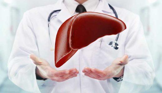 【手遅れになる前に】肝臓が原因の口臭セルフチェックと4つの対策