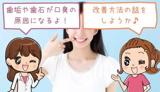 歯垢や歯石が口臭の原因となる3つの理由と対策法!